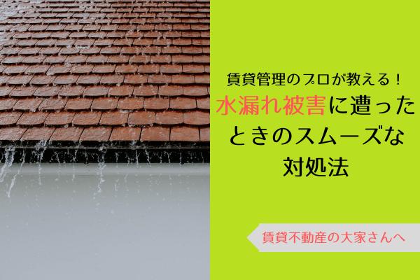 賃貸管理のプロが教える! 水漏れ被害に遭ったときのスムーズな対処法